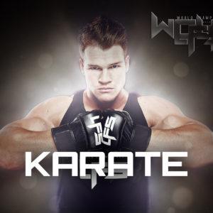 BLOG14: Celebrity Martial Artists – Karate Edition