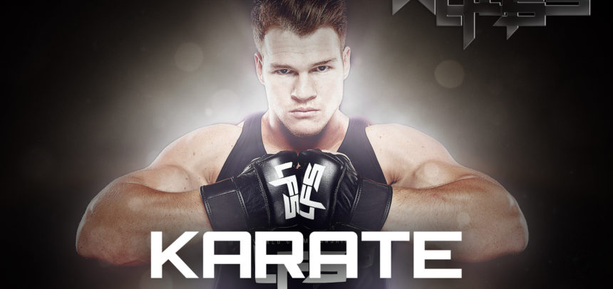 BLOG14: Celebrity Martial Artists – Karate Edition