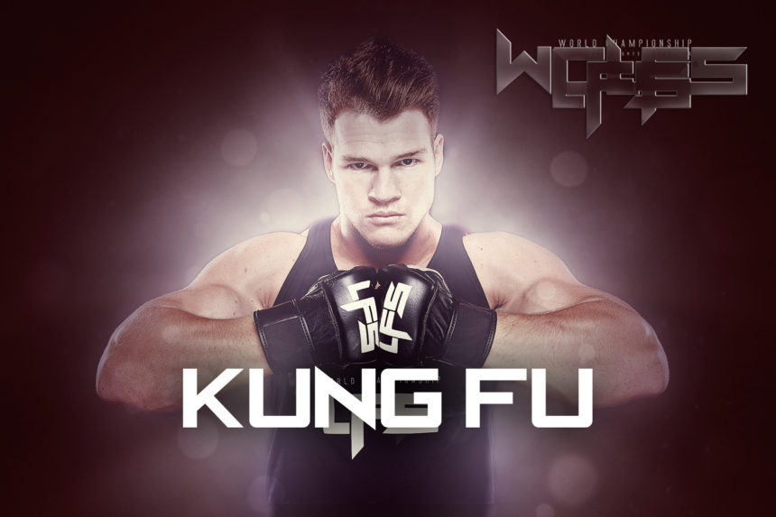 BLOG12: Celebrity Martial Artists – Kung Fu Edition